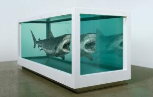 ダミアンハースト サメのホルマリン漬け